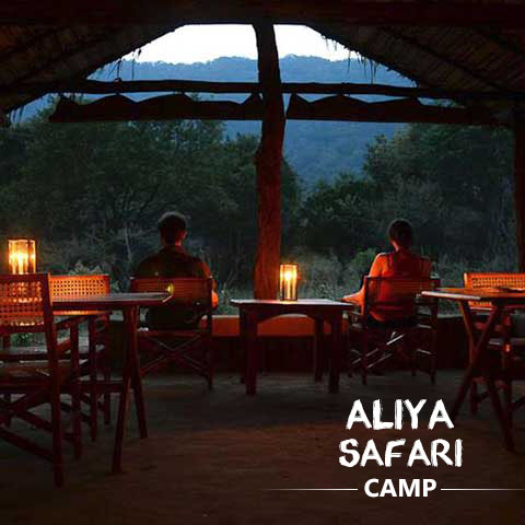Aliya Safari Camp