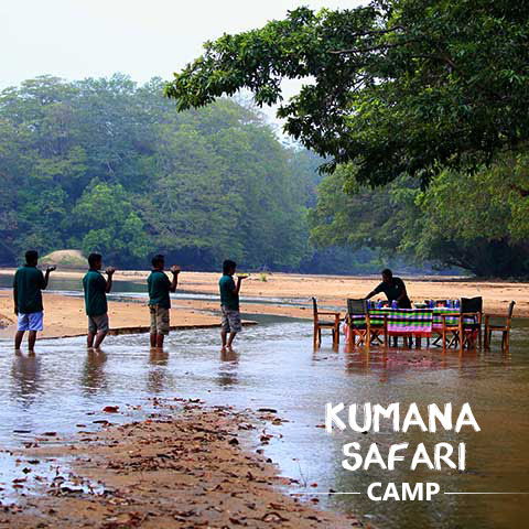 Kumana Safari Camp