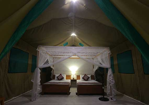 The permanent tents at Wilpattu Safari C& are very spacious and come with comfortable beds outside sitting area fans ensuite shower and toilet. & Wilpattu Safaris | Tented Safari Camping in Wilpattu | Wilpattu ...
